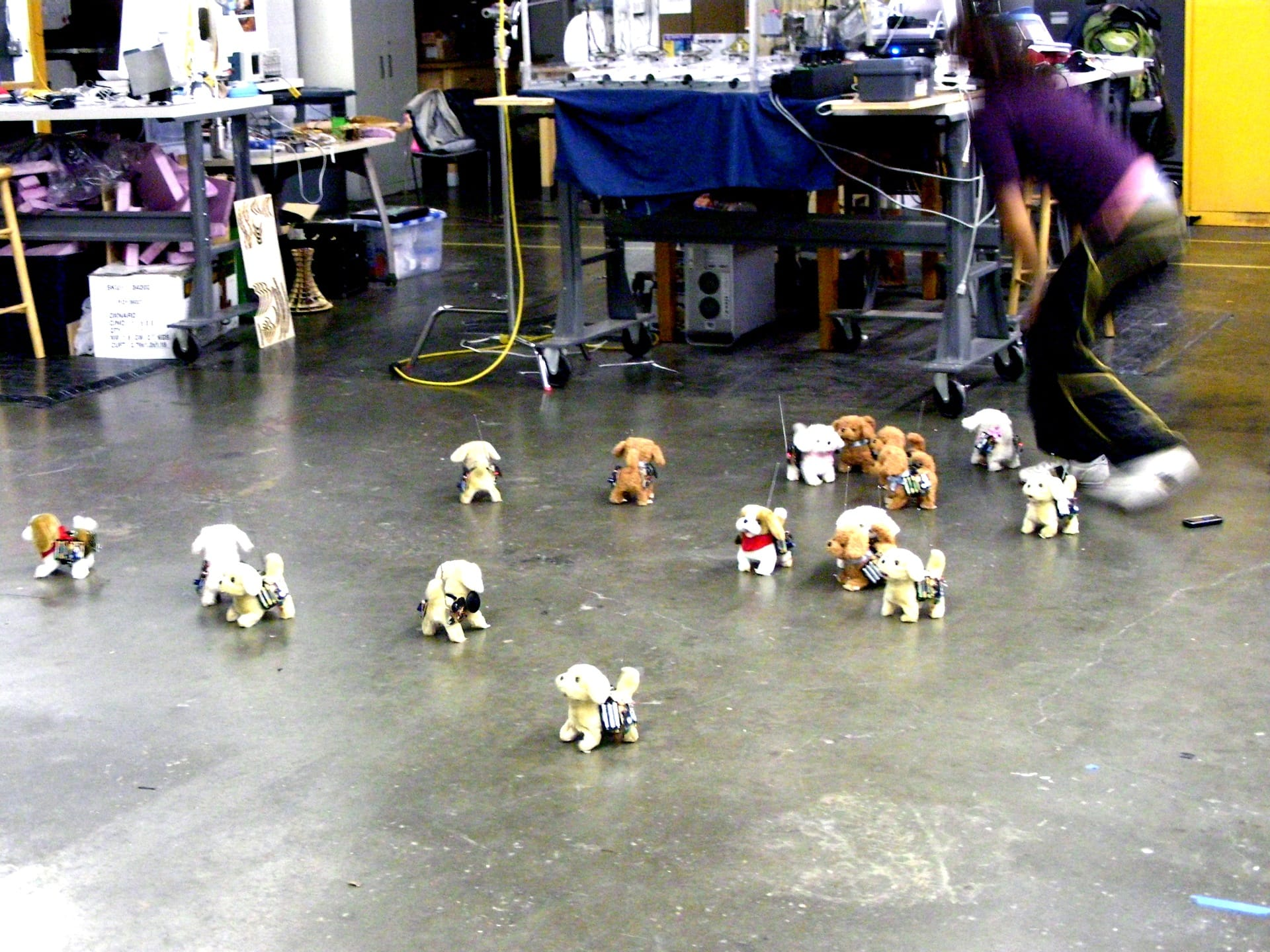 Have robot dog, will travel – dogs with electronics test _157_1920px