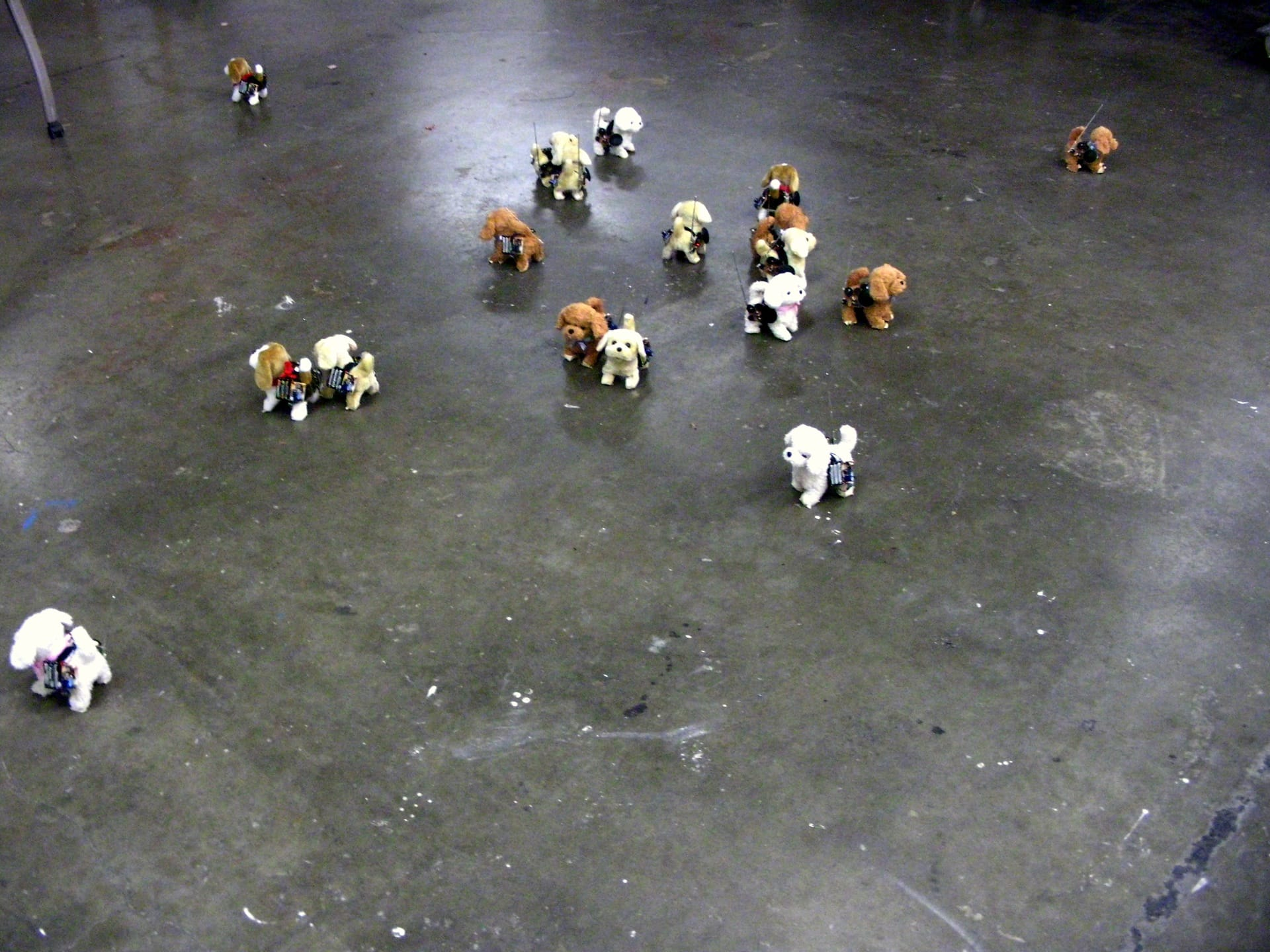 Have robot dog, will travel – dogs with electronics test _184_1920px